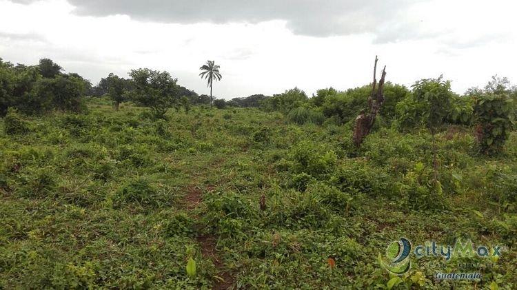 CItyMax Vende Terreno Plano en Escuintla, Taxisco