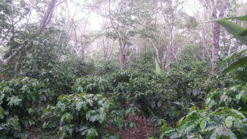 !Finca venta Aldea El Aguacate San Pedro Pinula Jalapa!