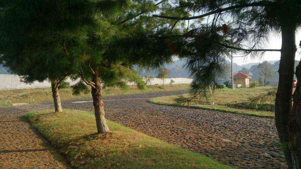 Citymax vende terreno dentro a garita en San Lucas Sac.