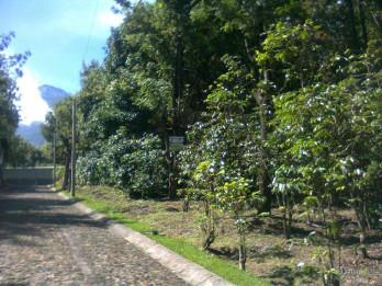 Se Vende Terreno en Antigua Gardens