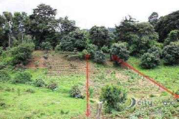 Venta de terreno en sector de Santa Lucia!
