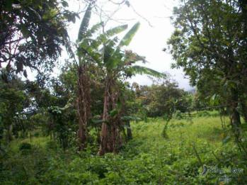 Terreno en venta a pocos minutos del centro de Antigua