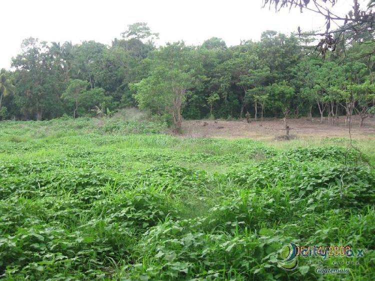 Vendo Terreno ubicado en Escuintla, la Arboleda