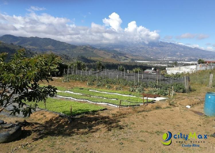 Se vende terreno Agrícola de 5071m en Tobosi de Cartago
