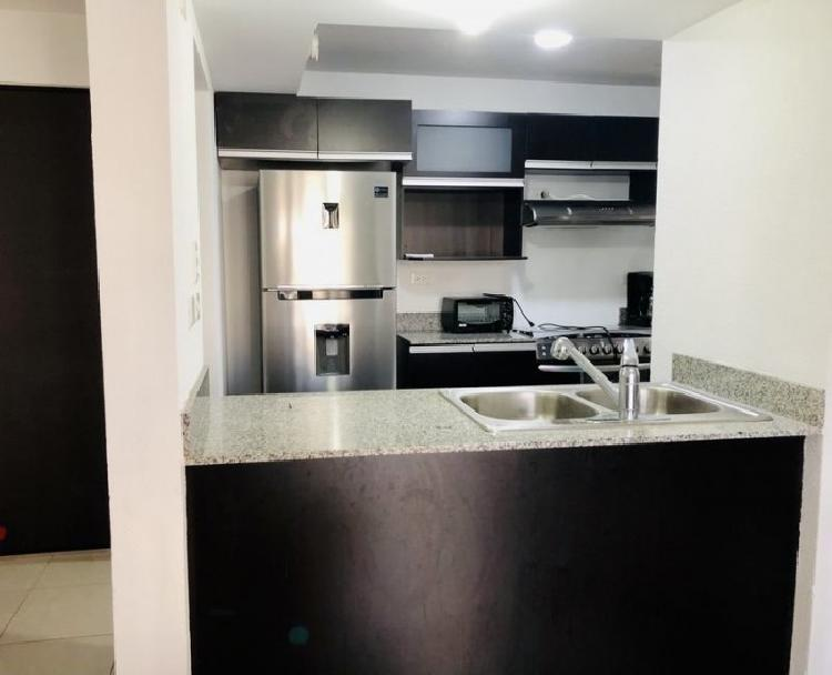 Apartamento en Renta Semi-Amueblado en PARQUE 7