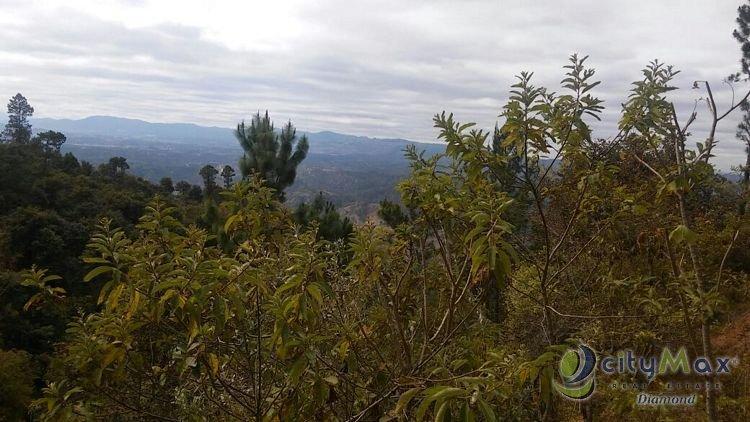 En Venta 70 mazanas terreno boscoso San Pedro Ayampuc